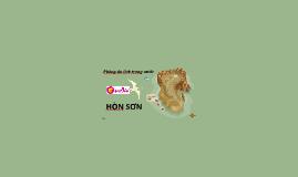 Copy of HÒN SƠN