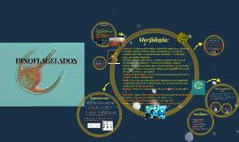 Copy of DINOFLAGELADOS