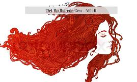 Det rødhårede gen - MC1R