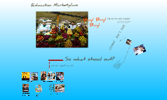 Learning Platforms - Customer Insight