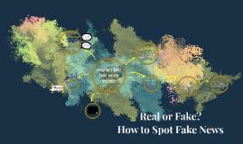FAKE NEWS 3