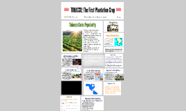 TOBACCO: The First Plantation Crop