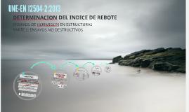 Copy of DETERMINACION DEL INDICE DE REBOTE