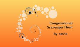 Congressional Scavenger Hunt