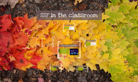 Copy of SSF in the classroom
