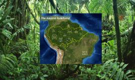 Copy of Amazon Rainforest