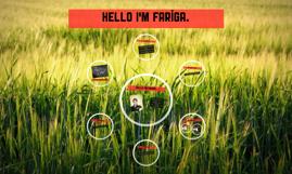 Hello I'm Fariga
