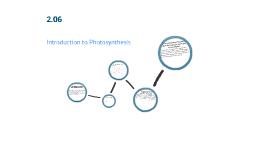 2.06 Intro to Photosynthesis