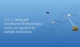 2. E. 2. Timing and coordination of physiological events are