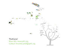 PEFC @ Mondi's Green Event