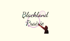 Copy of Blackland Prairie