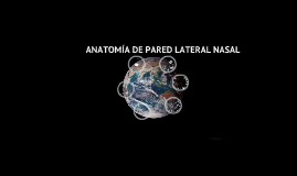 ANATOMIA DE PARED LATERAL NASAL