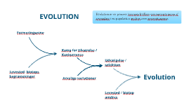 Evolution, begreber