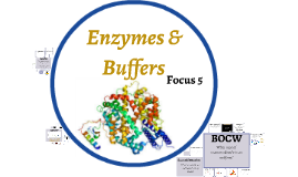 Focus 5: Enzymes & Buffers