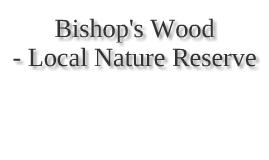 Bishop's Wood - Local Nature Reserve