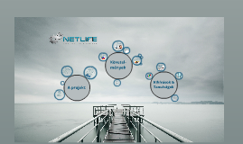 SAP CRM Lojalitás projekt