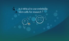 Is it ethical to use embryonic stem cells for research ?