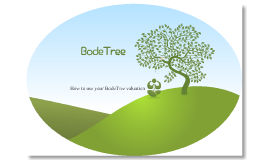 How to Use Your BodeTree Valuation
