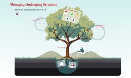 Managing Challenging Behaviours