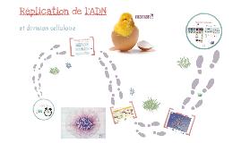 Évolution et diversité du vivant - Réplication de l'ADN, mitose et méiose