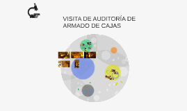 VISITA DE AUDITORÍA DE ARMADO DE CAJAS