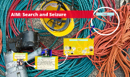 Copy of AIM: Search and Seizure
