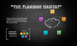 """The flamingo Habitad"""