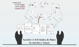 Sección 7 y 8 (Estados de flujos de efectivo y Notas)