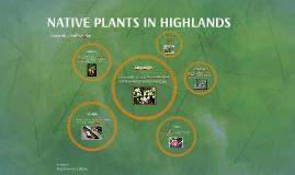 Copy of NATIVE IN HIGHLANDSPLANTS