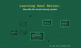 Psychology LG Review