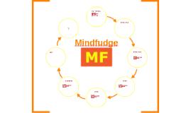 Hva er Mindfudge