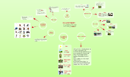 ECOSYSTEMS- Australian food chains and food webs