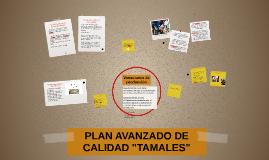 """Copy of PLAN AVANZADO DE CALIDAD """"TAMALES"""""""