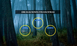 OBLIGACIONES FINANCIERAS