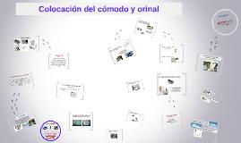 COLOCACION DEL COMODO Y ORINAL
