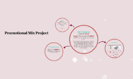 Promotional Mix Project