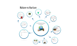 Year 12 Blueprint of life Nature vs Nurture