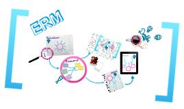 ERM presentation