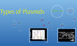 Copy of Copy of What Are Plasmids? - Definition, Types, Function & Character