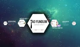 Copy of Ad Fundum Consultancy
