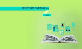 Copy of AVOCADOS CARTAGENA S.A.S.
