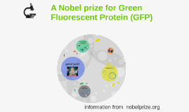 A Nobel prize for GFP