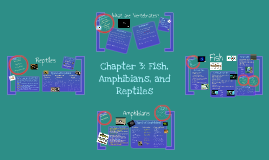 Chapter 3: Fish, Amphibians, and Reptiles
