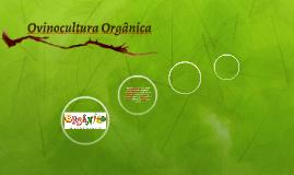 Ovinocultura Orgânica