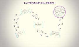 LA PROTECCIÓN DEL CRÉDITO