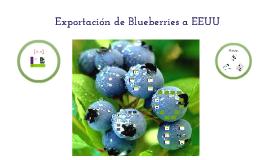 Exportación Blueberries