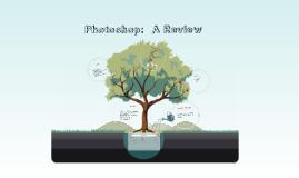 Stuart Photoshop Review