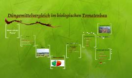Düngemittelvergleich im biologischen Tomatenbau