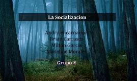 La Socializacion