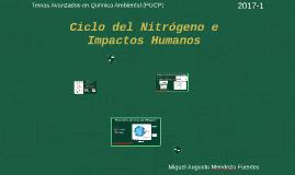 Ciclo del Nitrógeno e Impactos Humanos